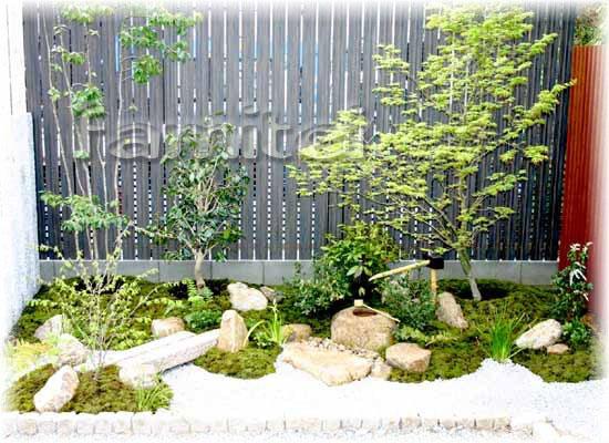 お庭セット:坪庭(苔:築山技法)