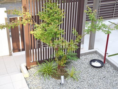 シンボルツリー モミジ 落葉樹 下草 低木 植栽