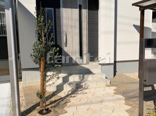 シンボルツリー オリーブ 常緑樹 植栽