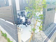 施工例画像:シンボルツリー アオダモ 落葉樹 植栽