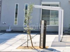 施工例画像:機能門柱 YKKAP ルシアスBK02型 シンボルツリー オリーブ 常緑樹 植栽