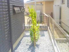 施工例画像:シンボルツリー マサキ 常緑樹 植栽