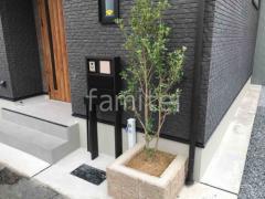 施工例画像:シンボルツリー ヒイラギ 常緑樹 植栽