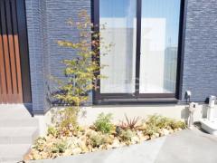 施工例画像:シンボルツリー イロハモミジ 落葉樹 植栽 ロックガーデン 東洋工業 クラッシュロックスモールサイズ